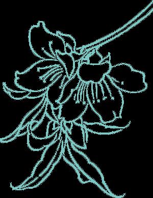 Fleur de l'Amandier